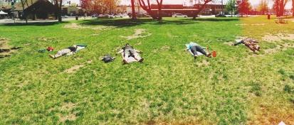 Yoga in Wheeler Park